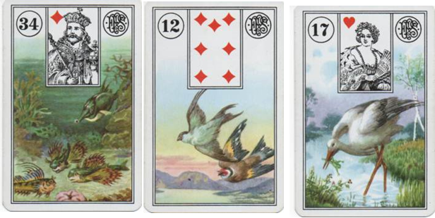Lenormand Square of 9 for Missing Child DeOrr Kunz Jr Row 2: 34 Fish - 12 Birds - 17 Storks