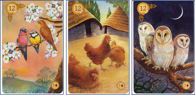 The Celtic Lenormand card deck features three versions of 12 BIRDS: Songbirds, Chickens and Owls