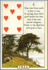 Blue Bird Lenormand 5 Tree http://livingwithcards.com