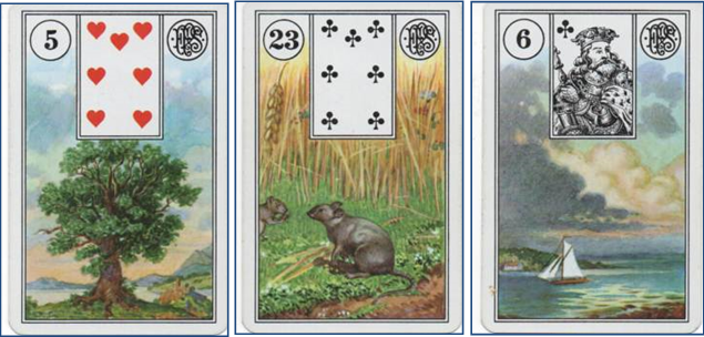 Forensic Cartomancy Lenormand card reading on missing child Jesse Wilson, Buckeye AZ: 5 Tree - 23 Mice - 6 Clouds http://livingwithcards.com